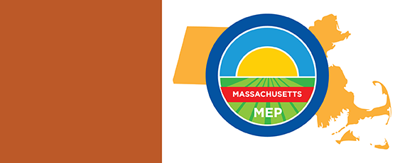 banner image of MMEP logo and orange color block